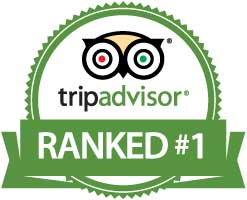tripadvisor number one hotel near cleveland airport in brook park ohio